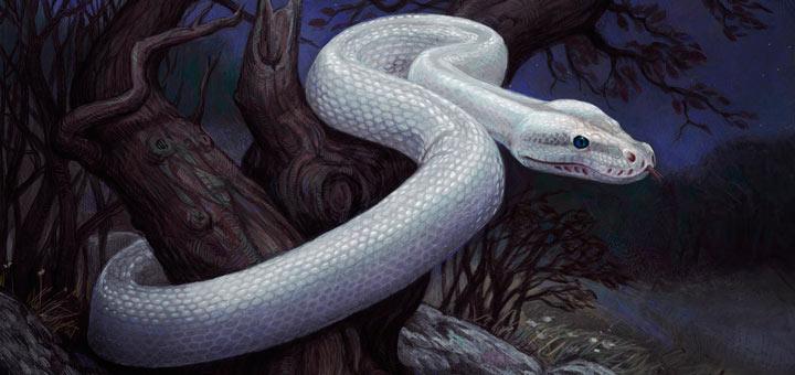 сонник, змеи во сне